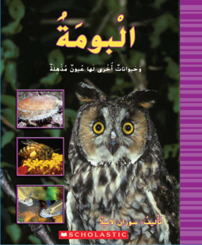 an essay on the amazing eyes of land animals To find a catchy title for your paper or essay, start by thinking of 1 or 2 keywords or phrases to include in the title that applies to the topic of your essay and will hook your reader in you can also try looking for a key quote or phrase and using part of it in your title.