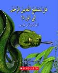 Q & A: Can Snakes Crawl Backward?