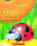Ladybug's Birthday