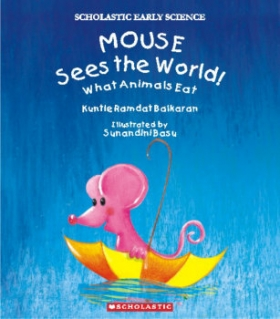 Mouse Sees the World