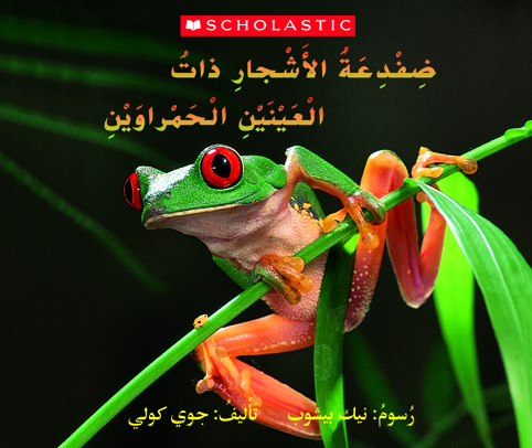 The Red-Eyed Tree Frog