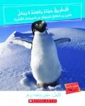 Penguins Swim But Don't Get Wet